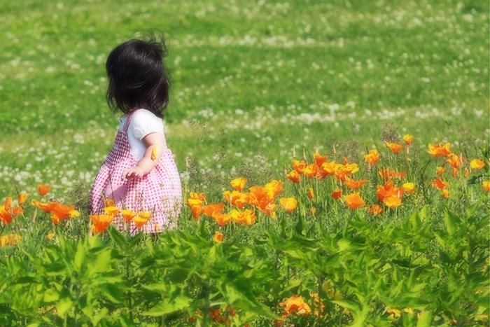 お花畑の少女